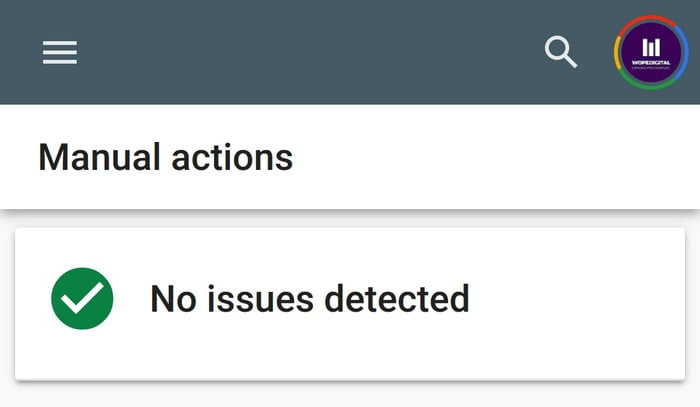 Google Search Console Manual Actions No Issues Detected