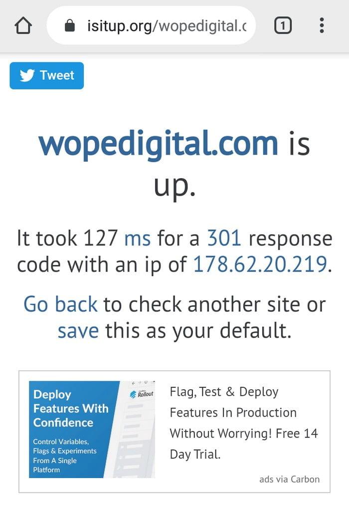 isitup.org wopedigital
