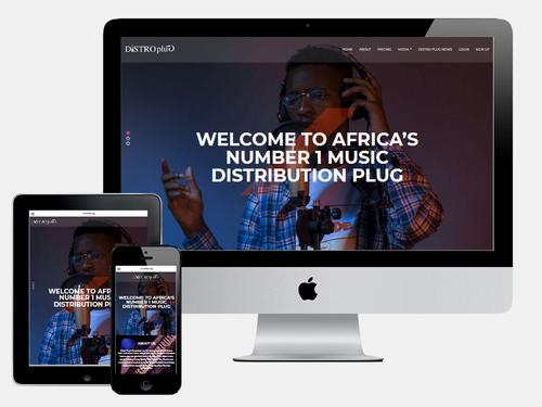 Website Design Project for DistroPlug