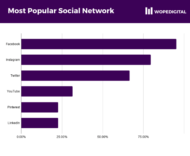 Chart showing the most popular social networks among ecommerce businesses