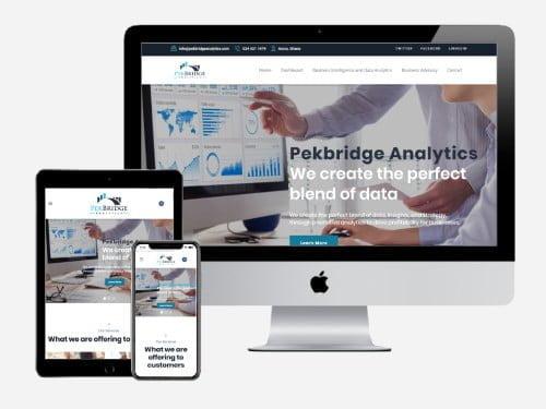 Website Design Project for PekBridge Analytics